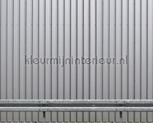 Iron wall silver