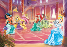 Princess pets in the castle