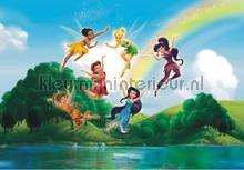 Fairies and a rainbow