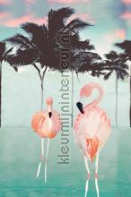 Flamingo and palms