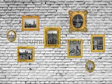 Pictures on brickwall