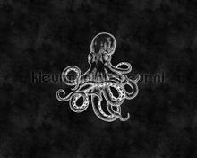 Blackboard 4 octopus