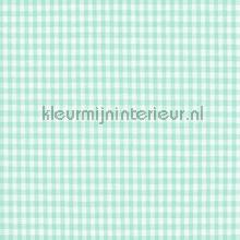 Boerenbont ruit 2mm licht turquoise