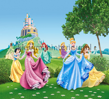 Princesses in front of the castle