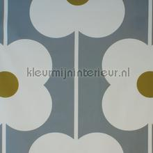 Abacus flower olive