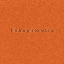 https://kleurmijninterieur.com/images/product/gordijnstoffen/collecties/starshine/gordijnstoffen-indes-indes-starshine-434-060-mi.jpg